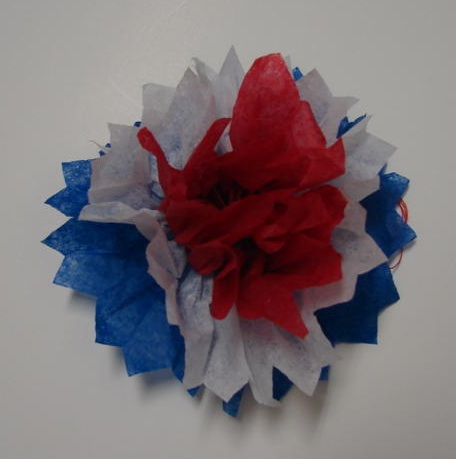 Fourth oif July Flower Craft